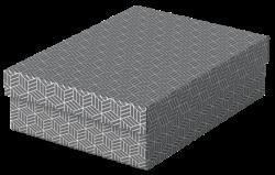 Úložný a dárkový box Esselte Home střední 3 kusy šedý