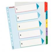 Kartonové rejstříky Esselte Mylar s přepisovatelným předním listem, A4 Maxi Mix barev