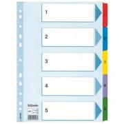Zesílené kartonové rejstříky Esselte Mylar, A4 Mix barev 1-5