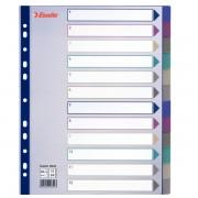 Celoplastové barevné průhledné rozlišovače Esselte A4 Maxi Mix barev